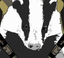 Hufflepuff Quidditch Sticker