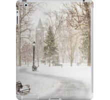 Victoria Park iPad Case/Skin