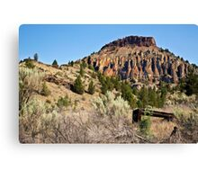 Clarno Rocks Canvas Print