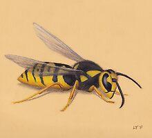 The Wasp by LFurtwaengler