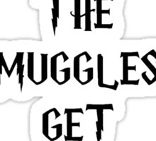 Don't Let The Muggles Get You Down Sticker