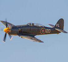 Sea Fury FB.11 VR930 by jonathan1984