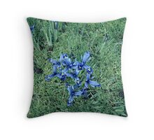 Spring Blossom... Throw Pillow