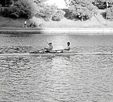 Lake Merritt Rowers by Robert Meyers-Lussier