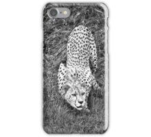 Cheetah Male iPhone Case/Skin