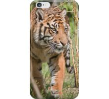 Young Tiger iPhone Case/Skin