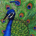 Peacock by Lars Furtwaengler