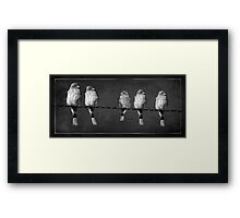 Little Birdies On A Wire Framed Print