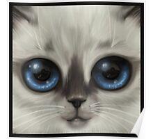 The Shining Kitten Poster