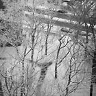 Snowy Bronx Courtyard by W. Lotus