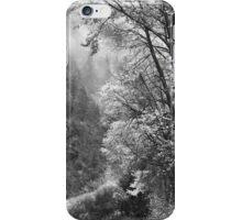 Autumn Sparkles on Green Mountain iPhone Case/Skin