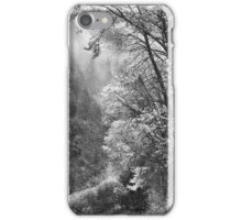 Autumn Sparkles on Green Mountain iPhone Case/Skin