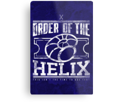 Order of the Helix Metal Print