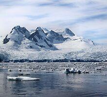 Cierva Cove Iceberg & Glaciers by Carole-Anne
