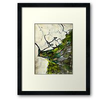 rockpool reflections Framed Print