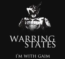 Warring States - Gaim by cyclestogehenna