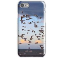 Dungeness Bay Flock of Seagulls iPhone Case/Skin