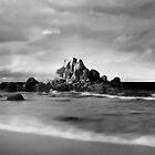 Deep Creek Tasmania by Angelika  Vogel