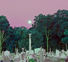 Graves under moonlight by InspiredEye