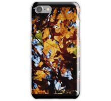 Fall Shade iPhone Case/Skin