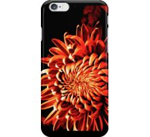 Catching Fire iPhone Case/Skin