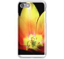 Burst 2 iPhone Case/Skin