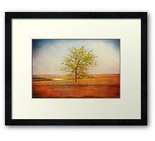 Lonely tree.I Framed Print