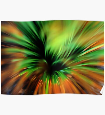 Explosion of colour Poster