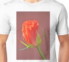 A PEACHES AND CREAM BUD ROSE Unisex T-Shirt