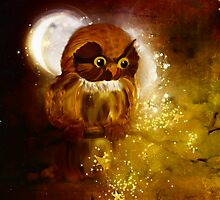 Owl in starfall by harietteh