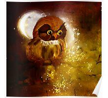 Owl in starfall Poster
