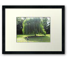 Christ Church Meadow Framed Print