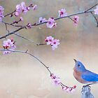 Bluebird and Plum Blossoms by Bonnie T.  Barry
