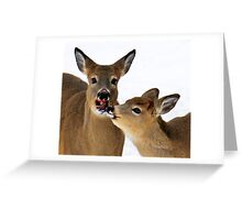 Can I Share Your Carrot? Greeting Card