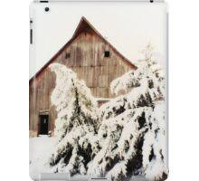 First Snow Fall iPad Case/Skin