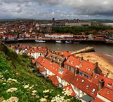 Whitby from the East Cliff by Tom Gomez