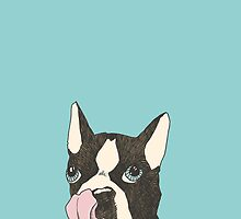 Hungry Boston Terrier (Black) by msruffles