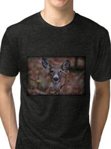 Oh Rut Roh Tri-blend T-Shirt
