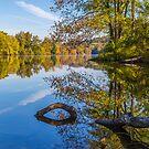 Peaceful Autumn by Karol Livote