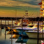 Evening at the Marina by TJ Baccari Photography