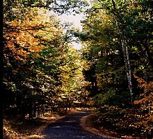 Fall Road by lorenvictoria