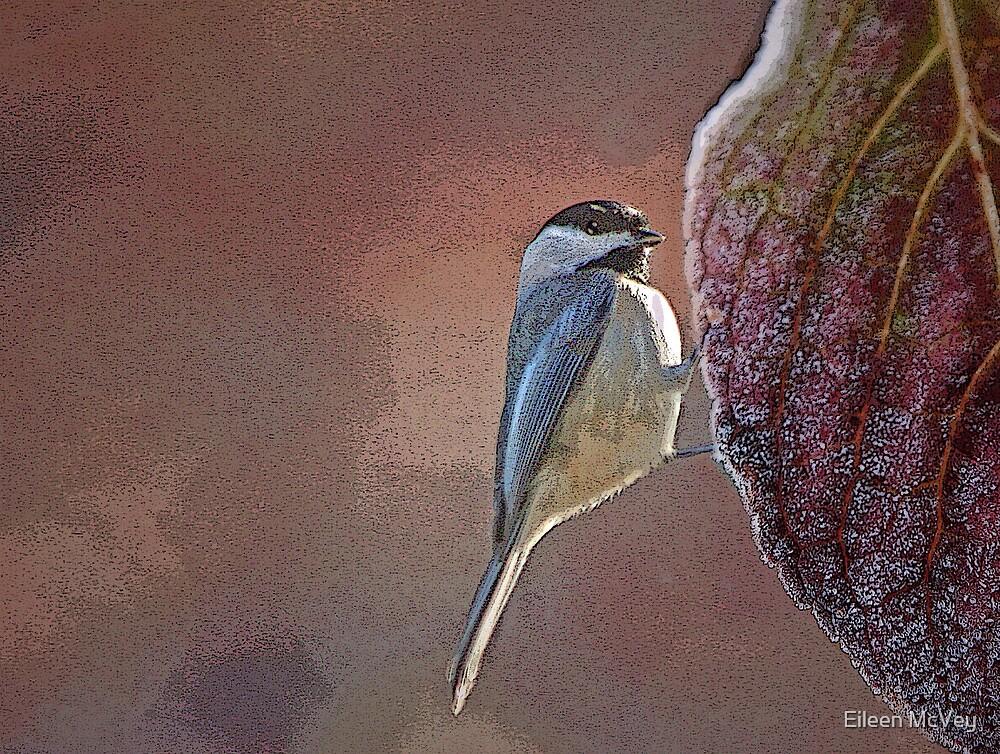 Chickadee by Eileen McVey