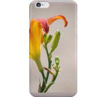 springs best iPhone Case/Skin