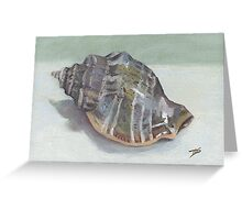 CONCH SHELL Greeting Card