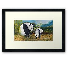 Keeping a watchful eye Framed Print