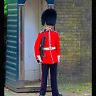 Queen's Guard by cammisacam