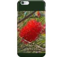 Red Bottle Brush iPhone Case/Skin
