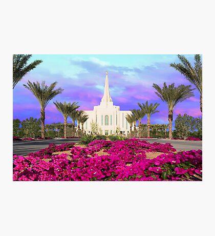 Gilbert Arizona Temple - Red Flowers - 30x20 Photographic Print