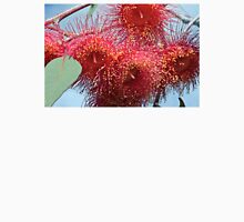 Red Gum Tree flower Unisex T-Shirt