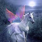 DREAMER'S ROAN.jpg by Tammera
